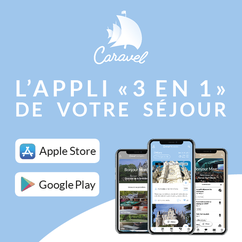 Caravel-tourisme-Vallée-de-la-Loire(découvrir-Touraine-vignoble-visite-vignes-cave