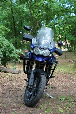 Kühlerschutz Ducati Multistrada