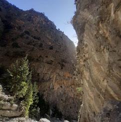 Griechenland, Kreta, Sehenswürdigkeit, Reisebericht, highlight, Urlaub, Samaria, Schlucht, Wandern,
