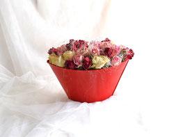Rosen cremefarben im roten Keramiktopf