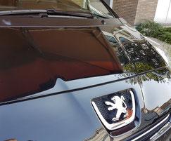 Exterieur Auto Reiniging