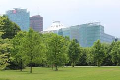 Blick auf den Potsdamer Platz, vom Park Tiergarten. Foto: Helga Karl