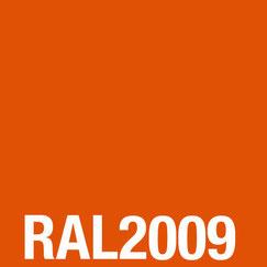 ESG Glas farbig lackiert RAL 2009
