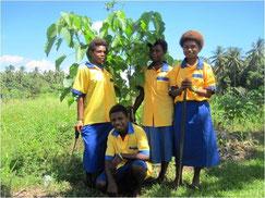 CFP Papua New Guinea 2012