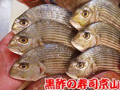 江東区越中島まで美味しいお寿司をお届けします。宅配寿司の京山です。お正月も営業します!