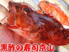 江東区北砂まで美味しいお寿司をお届けします。宅配寿司の京山です。お正月も営業します!