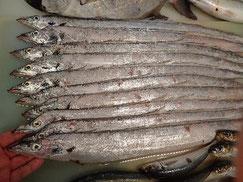太刀魚の寿司 デリバリー