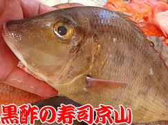 江東区白河まで美味しいお寿司をお届けします。宅配寿司の京山です。お正月も営業します!