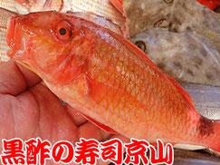 江東区清澄まで美味しいお寿司をお届けします。宅配寿司の京山です。お正月も営業します!