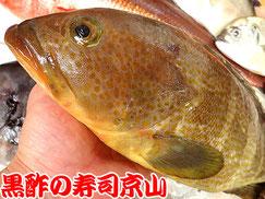 寿司 出前 江東区 毛利