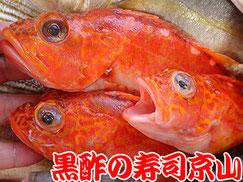 江東区亀戸まで美味しいお寿司をお届けします。宅配寿司の京山です。お正月も営業します!