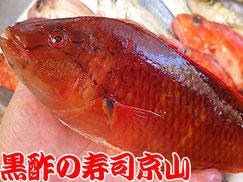 江東区塩浜まで美味しいお寿司をお届けします。宅配寿司の京山です。お正月も営業します!