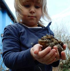 Kind mit Erdkroeten - Dr. Christian Stierstorfer, LBV Bildarchiv