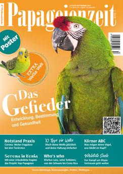 Soldatenara auf Papageienzeit 57 mit Bericht über Gefieder und vielem mehr