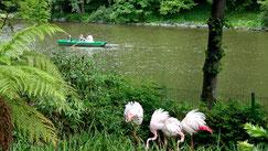 Tierpark Röhrensee in Bayreuth mit Streichelzoo