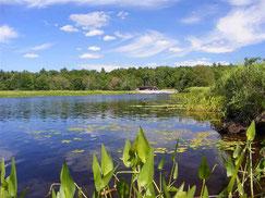 See in Haus am See in Canada, Nova Scotia, präsentiert von VERDE Immobilien