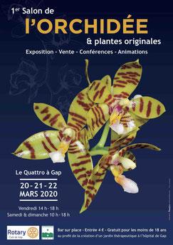 salon-orchidée-plante-originale-gap