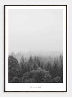 Skandinavische Poster Wälder
