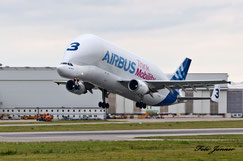 Airbus A300F4-608ST Beluga(Dolphin3) (A3ST)   (Airbus Transport International)