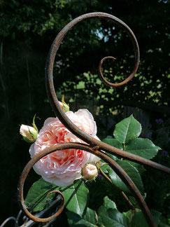 Handgeschmiedetes Klettergerüst für Rosen oder Clematis. 100% Swiss Made im Kanton Bern