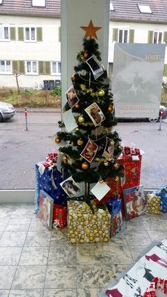 Weihnachtswunschbaum im Heimtierland