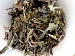 Thé Yunnan blanc Kancha