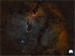 IC 1396A - Elefantenrüsselnebel - Elephantstrunk