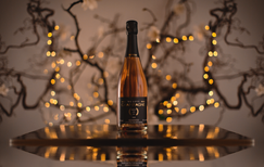champagner an weihnachten, champagner an Sylvester, champagner rose, we love champagner, champagner liebe, richtiger champagner, das perfekte geschenk, champagner zum verschenken, champagner zum anstoßen, blanc de blanc, mellisime, rose, prosecco, sekt,