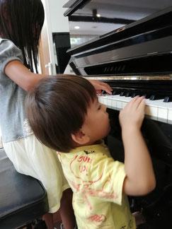 ピアノ リトミック どれみ音楽教室
