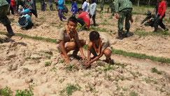 私の村では、学校だけでなく、村の人たちが 協力して森を育てています(写真は、バーン ノーントーングの森づくりの様子)
