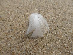 Eine weiße Feder in Form eines Engels liegt auf hellem Sand