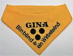Blinden Logo, blinder Hund, Halstuch für blinden Hund,Blindenhalstuch