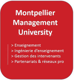 Montpellier Management Universite: direction du master 2 Marketing du sport et des loisirs à l'UFR AES de Montpellier
