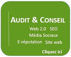 Audit et conseil en Web 2.0, SEO, médias Sociaux, e-reputation et site web
