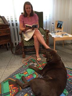 Lesung Eröffnung Hundepension, Hund, Kempen, Selbständigkeit