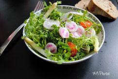 salade équilibrée végétalienne