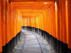 Joyful Travel Japan, туры в японию, гид в японии, виза в японию, визовая поддержка в японию