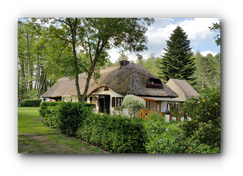 Vereinshaus mit Reetdach im Sommer