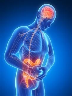 Neurogastroenterology & Motility Volume 24, Issue 5, pages 405-413, 8 MAR 2012