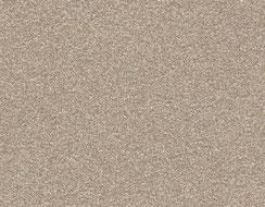 Beige gris, effet finement sablé et givré - Quartz 2