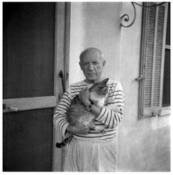 ピカソは小さな時から猫をずっと飼っている。