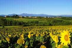 Village de Tréziers - Pyrénées Audoises
