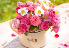Fotokarte, Glückwunschkarte, Herbstwald, Herbst, Wald, Ettiswil, Priska Ziswiler