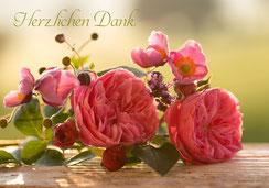 Glückwunschkarte, Fotokarte, Rosen, Geburtstagskarte, Sursee, Ettiswil, Priska Ziswiler