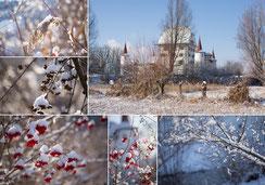 Weihnachtskarte, Neujahrskarte, Schloss, Märchenschloss, Schloss Wyher, Schneelandschaft