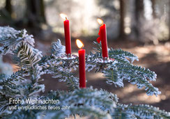 Weihnachtskarte, Karte zu Weihnachten, Fotokarte Weihnachten, Kerzen im Wald, Christbaum