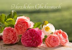 Geburtstagskarte, Glückwunschkarte, Fotokarte, Karte zum Geburtstag, Geburtstag, Ettiswil, Sursee, Willisau, Luzern, Priska Ziswiler, Rosen