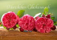 Glückwunschkarte, Fotokarte, Geburtstagskarte, Rosen, Duftrosen, Romantische Rosen