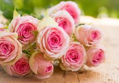 Fotokarte, Glückwunschkarte, Geburtstagskarte, Winter, Wintercollage