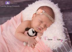 haarband baby, baby haarband, neugeborenen Haarband, Haarband für Neugeborenen, Vintagband, Blume handmade, Feierlichkeiten, Taufe, Taufband, Hochzeit